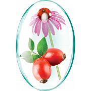 imagePropolis+Vit.C naturala+Echinacea si miere