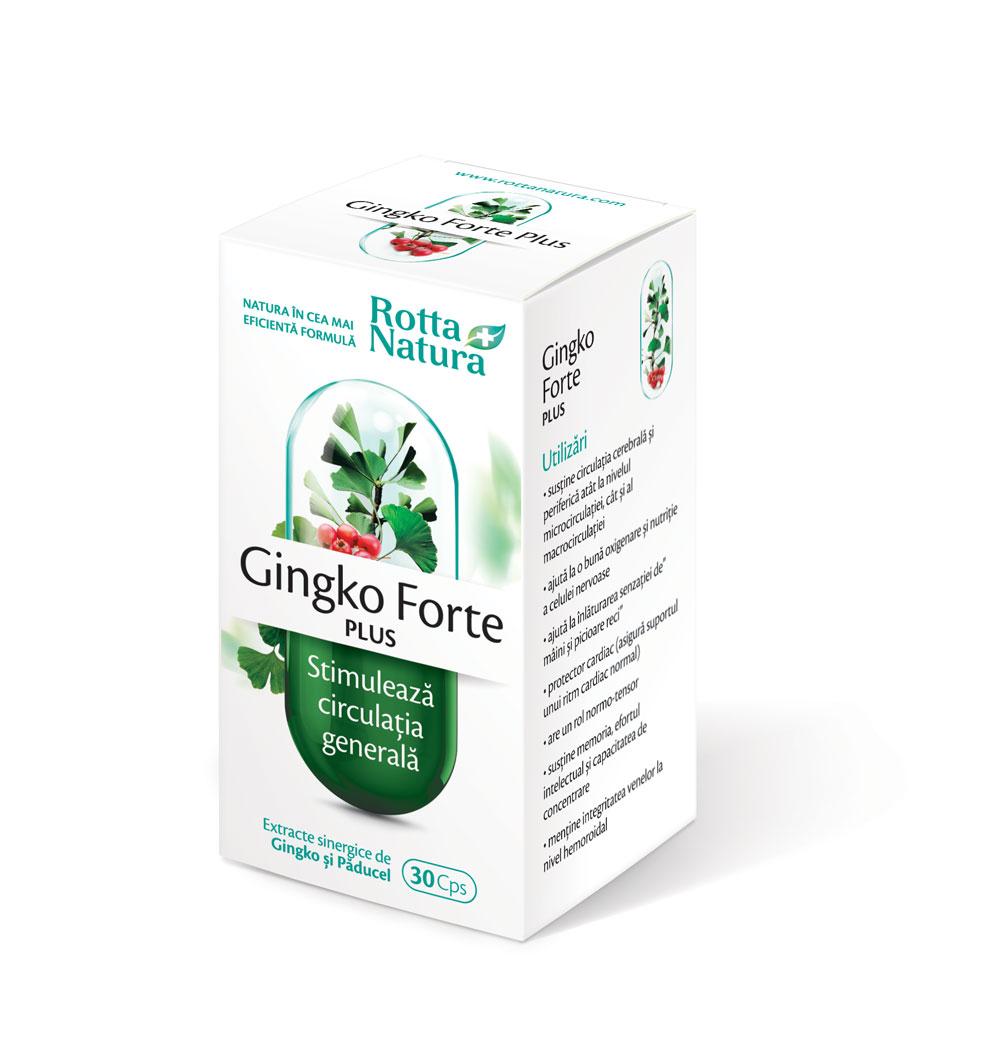 Ginkgo Forte Plus